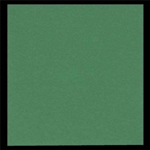 GASTRO-LINE lautasliina 40x40cm vihreä 100kpl/pkt