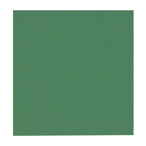 GASTRO-LINE lautasliina 24X24cm vihreä 100kpl/pkt